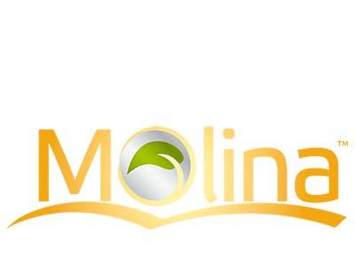 Molina (Тайланд)