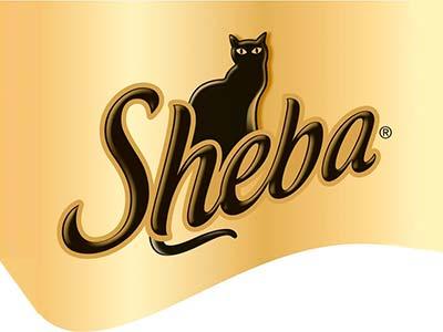 Sheba (Россия)