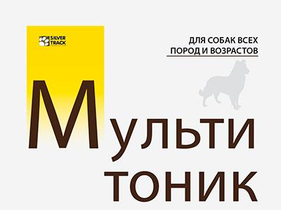 Мультитоник (Россия)
