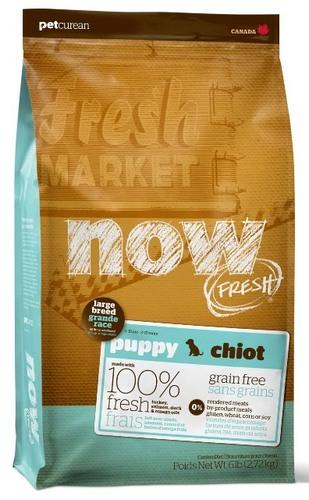 Now!Fresh! Grain Free Puppy Large Recipe 29/16 (Нау!Фреш! Грейн Фри Паппи Лардж Ресайп 29/16) - Корм для щенков крупных пород (БЕЗЗЕРНОВОЙ, индейка, утка и овощи) 5,45 кг