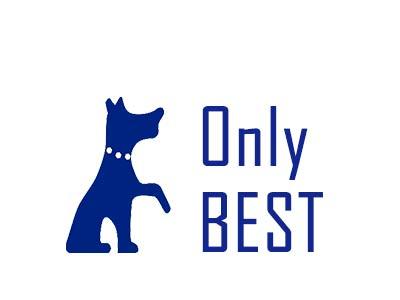 Only Best (Китай)