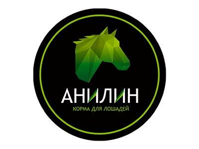 Анилин (Россия)