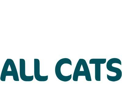 All Cats (Россия)